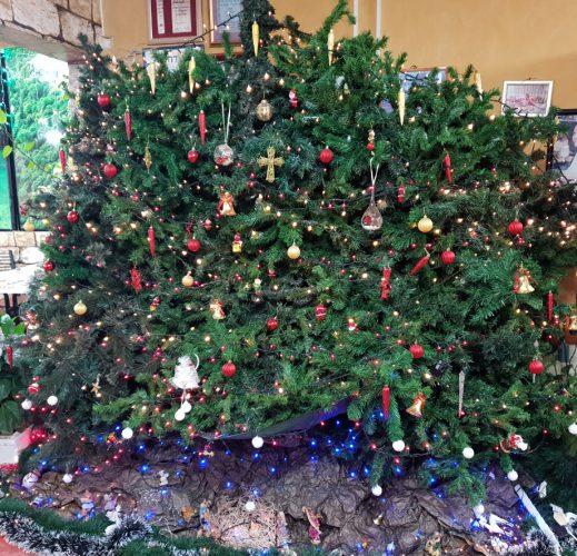 עץ אשוח וקישוטי כריסמס