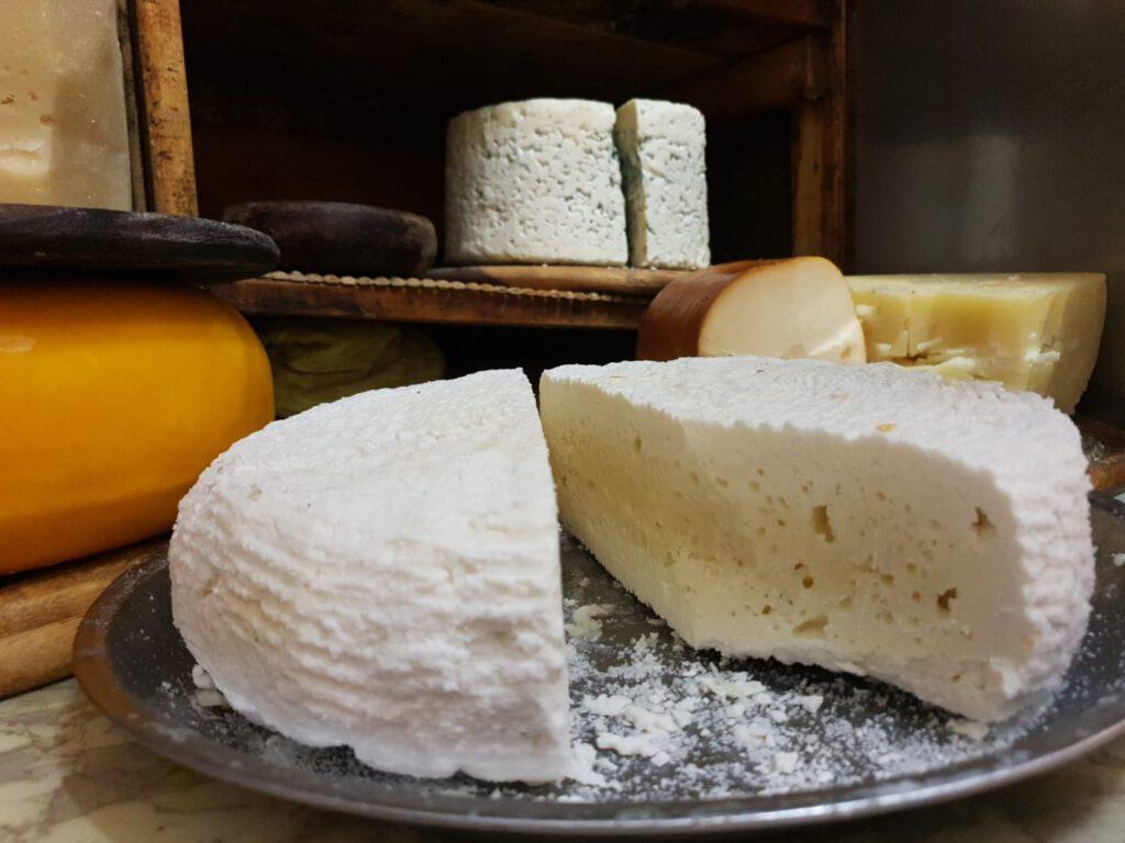 גבינה צפתית